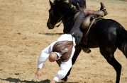 Horse Riding Accidents